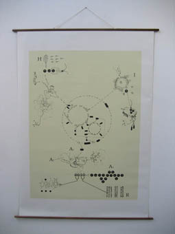 Wall map 3: The circle of life. (160 x 220 cm)