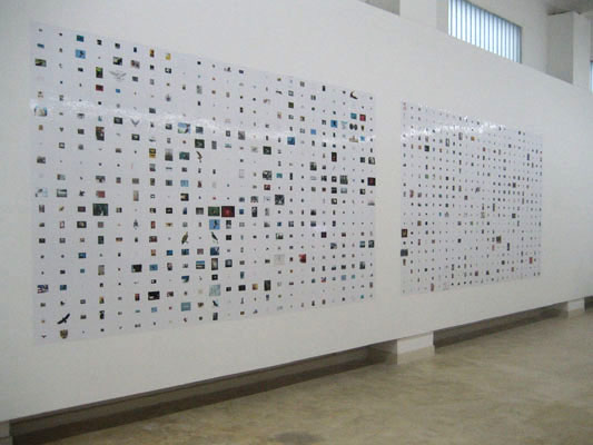 The Rich Harvest, installation view, RCM Museum, Nanjing, China, 2006