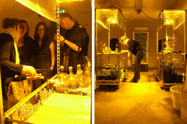 Visitors during the first public distillation proofing and tasting the essence