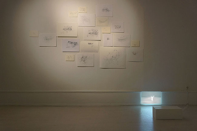 Nikolaus Gansterer, Rehearsing the Third Hand, 2014, a series of 20 drawings, pencil and marker on paper, dimensions variable, insstallation view Kunstverein Goettingen, courtesy of the artist (Photo: Nikolaus Gansterer)